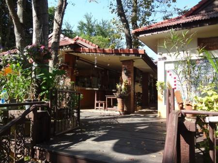 Вход на тайский массаж слепых с Наклыа 22